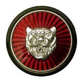 Badge dans barre de calandre (E S1)