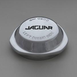 Ecrou de roue Continental Jaguar, 52mm, 8TPI, LH